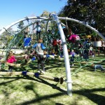 Richmond Park net 2