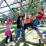 Richmond park net