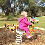Cheltondale Park Playground