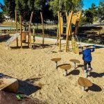 Eagle Street Park Playground