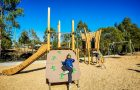 QLD - Eagle Street Park Playground