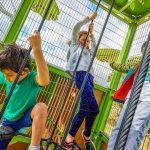 Green Gully Reserve Playground