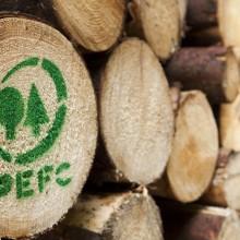 Das_PEFC-Logo_auf_Holzstaemmen_MG_9860