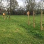 Case Studies: Cinnamon Lane Playground Equipment and innovative Proludic Playground Design Image 9