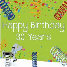 30th birthday aniversary springer promotion large green square graphic