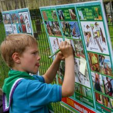 Seven Steps films to playground equipment consultation & funding ideas from child