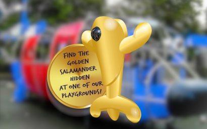 Golden Salamander Playground Equipment Competition