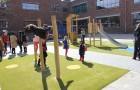 De Haagsche Scholenvereniging